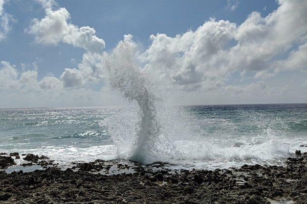Grand Cayman Blow Holes